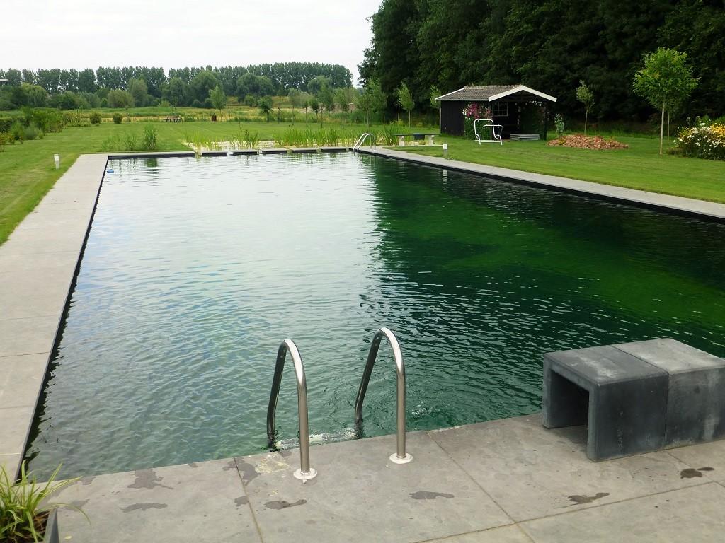 Zwemvijver van dorland hoveniers for Zwemvijver filtersysteem